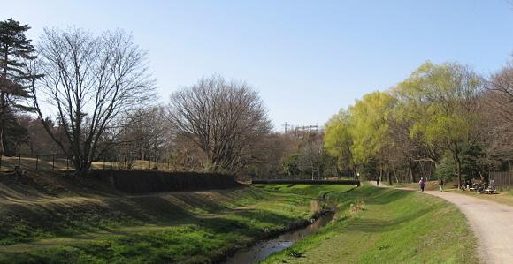 野川公園の春