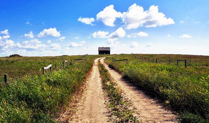 大草原の小さな家の画像 p1_23