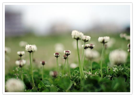 photo-001c